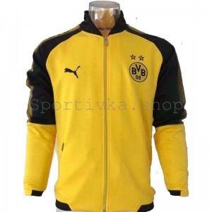 Спортивная кофта Borussia Dortmund