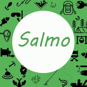 Котушки Salmo